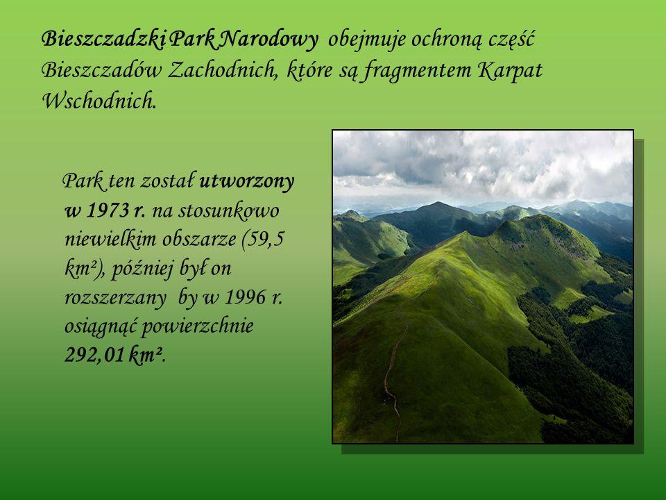 Bieszczadzki Park Narodowy obejmuje ochroną część Bieszczadów Zachodnich, które są fragmentem Karpat Wschodnich. Park ten został utworzony w 1973 r. n