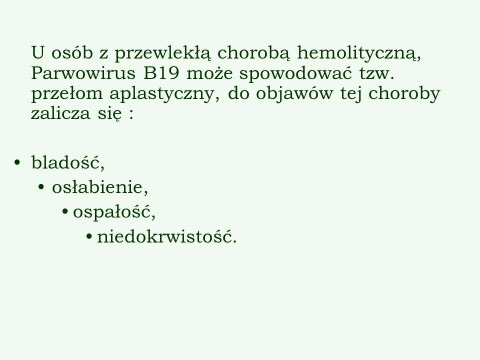 U osób z przewlekłą chorobą hemolityczną, Parwowirus B19 może spowodować tzw. przełom aplastyczny, do objawów tej choroby zalicza się : bladość, osłab