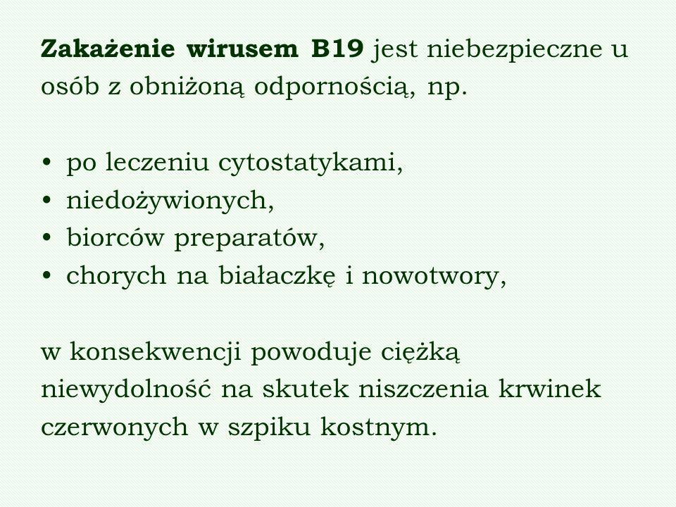 Zakażenie wirusem B19 jest niebezpieczne u osób z obniżoną odpornością, np. po leczeniu cytostatykami, niedożywionych, biorców preparatów, chorych na