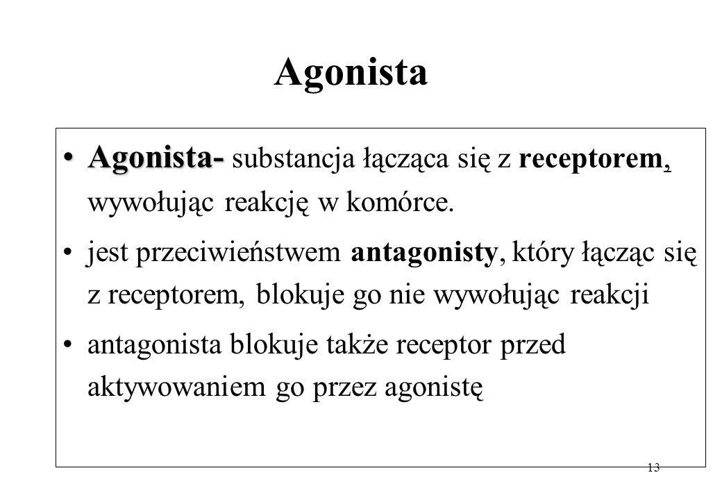 13 Agonista Agonista-Agonista- substancja łącząca się z receptorem, wywołując reakcję w komórce. jest przeciwieństwem antagonisty, który łącząc się z