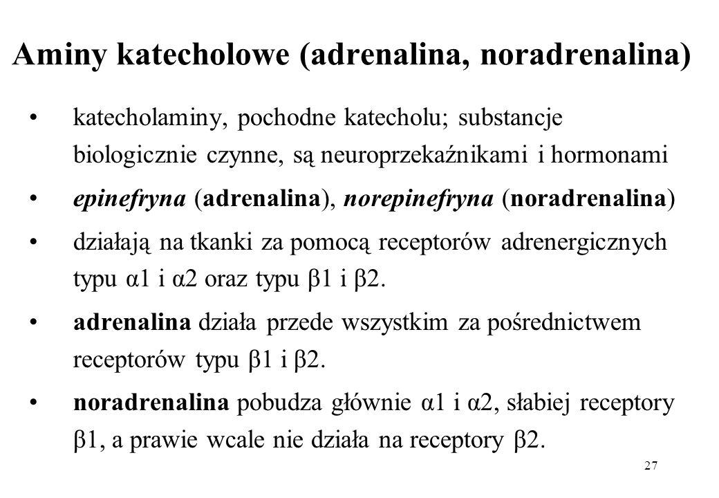 27 Aminy katecholowe (adrenalina, noradrenalina) katecholaminy, pochodne katecholu; substancje biologicznie czynne, są neuroprzekaźnikami i hormonami