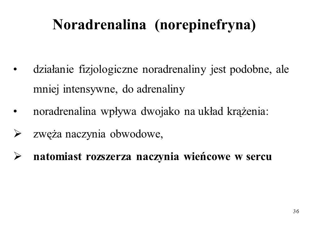 36 Noradrenalina (norepinefryna) działanie fizjologiczne noradrenaliny jest podobne, ale mniej intensywne, do adrenaliny noradrenalina wpływa dwojako