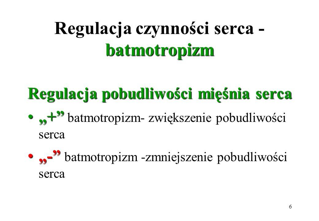 6 batmotropizm Regulacja czynności serca - batmotropizm Regulacja pobudliwości mięśnia serca ++ batmotropizm- zwiększenie pobudliwości serca -- batmot