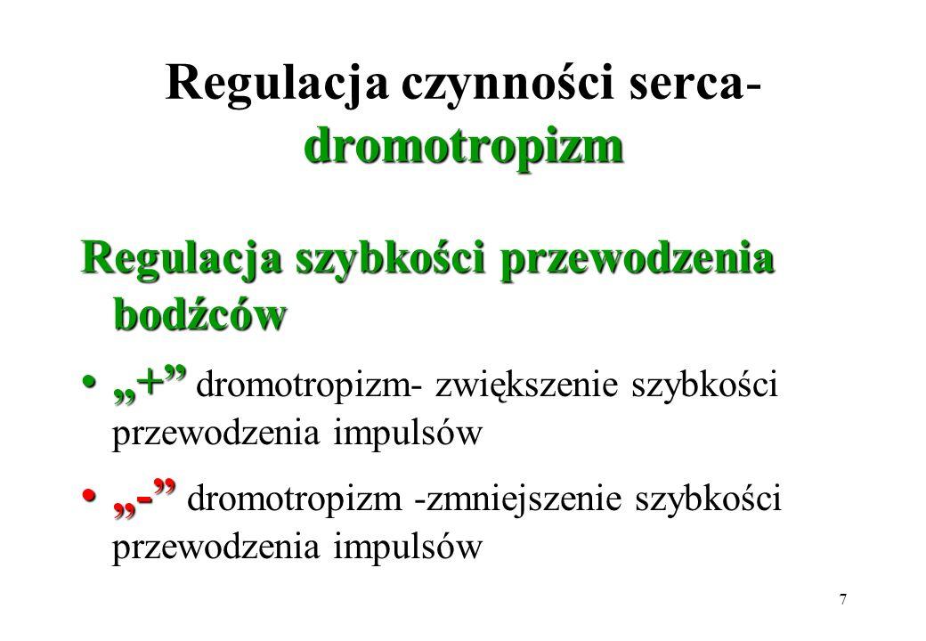 7 dromotropizm Regulacja czynności serca- dromotropizm Regulacja szybkości przewodzenia bodźców ++ dromotropizm- zwiększenie szybkości przewodzenia im