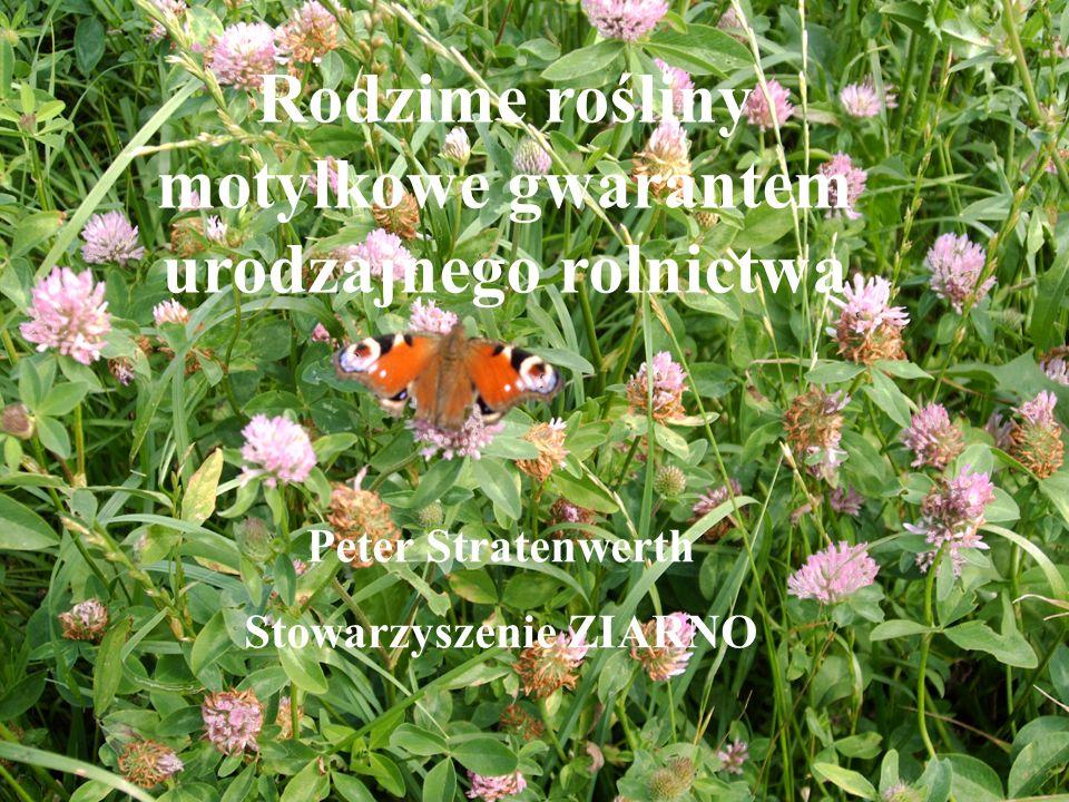 Rodzime rośliny motylkowe jako gwarant Rodzime rośliny motylkowe gwarantem urodzajnego rolnictwa Peter Stratenwerth Stowarzyszenie ZIARNO