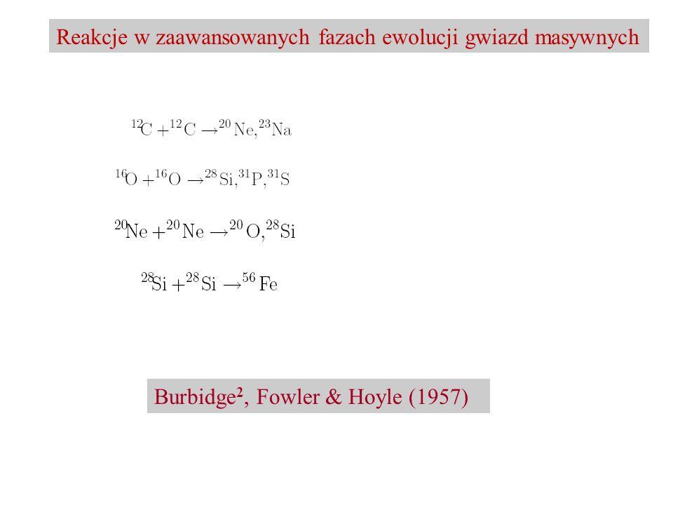 Reakcje w zaawansowanych fazach ewolucji gwiazd masywnych Burbidge 2, Fowler & Hoyle (1957)