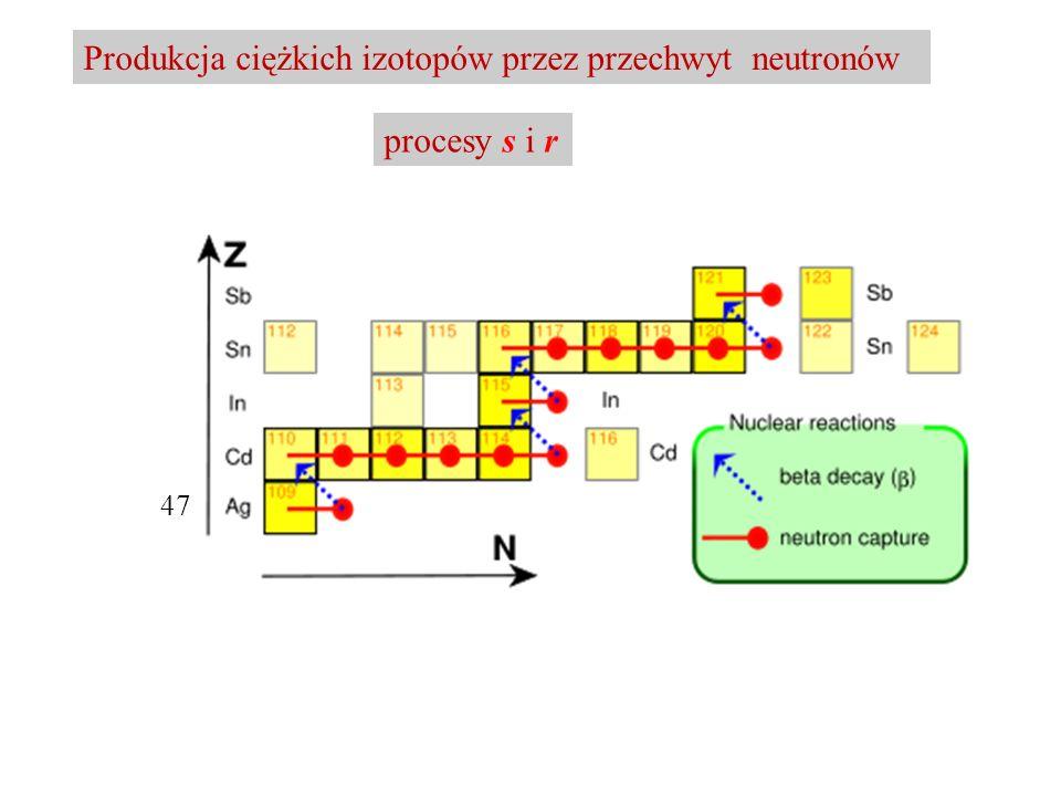 Produkcja ciężkich izotopów przez przechwyt neutronów procesy s i r 47