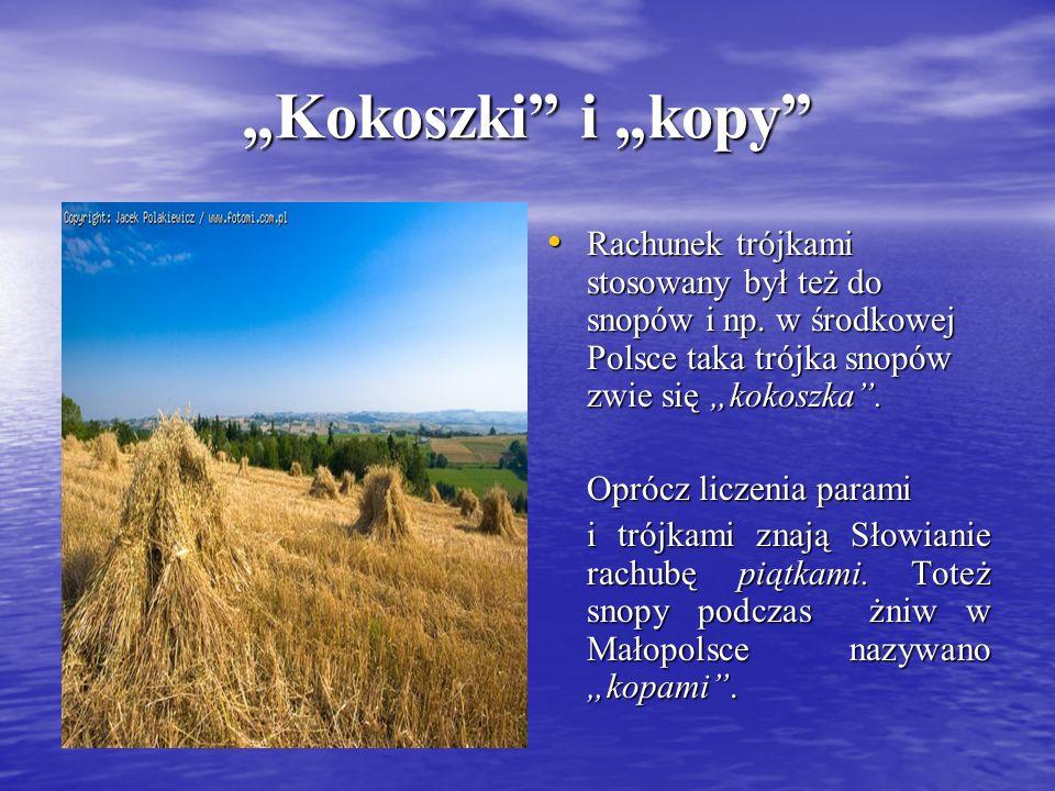 Kokoszki i kopy Rachunek trójkami stosowany był też do snopów i np. w środkowej Polsce taka trójka snopów zwie się kokoszka. Rachunek trójkami stosowa