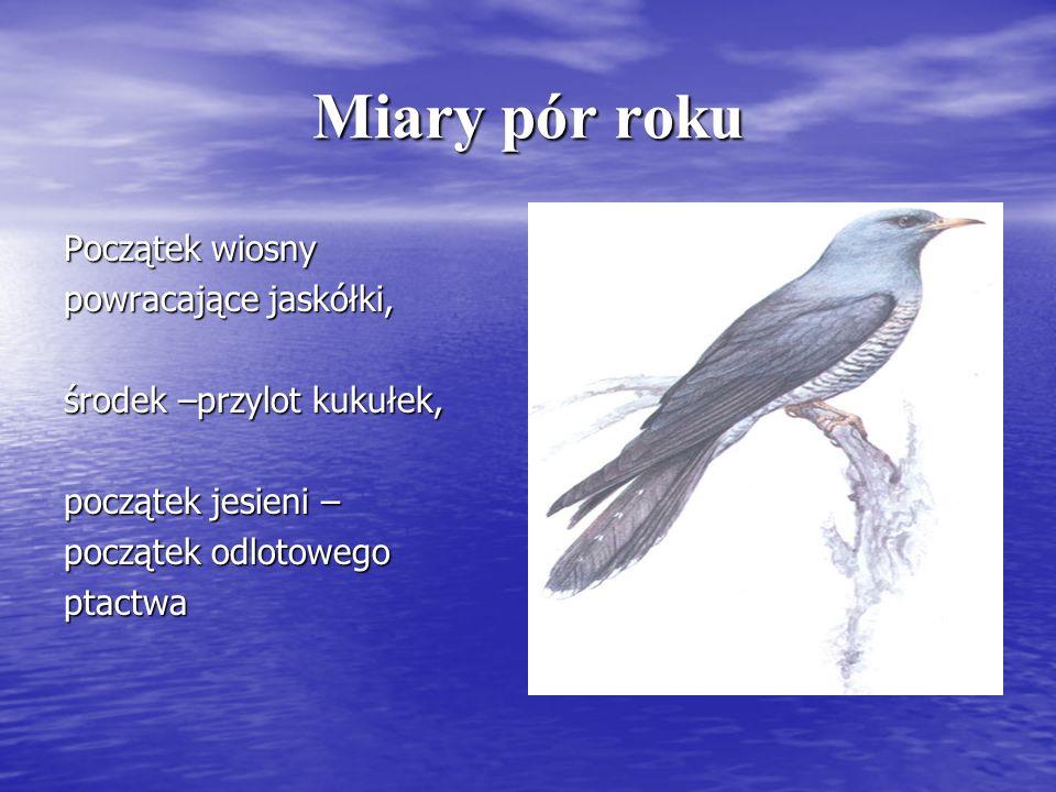 Miary pór roku Początek wiosny powracające jaskółki, środek –przylot kukułek, początek jesieni – początek odlotowego ptactwa