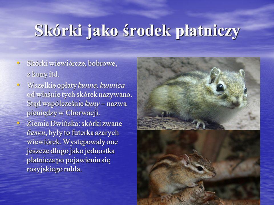 Skórki jako środek płatniczy Skórki wiewiórcze, bobrowe, Skórki wiewiórcze, bobrowe, z kuny itd. Wszelkie opłaty kunne, kunnica od właśnie tych skórek