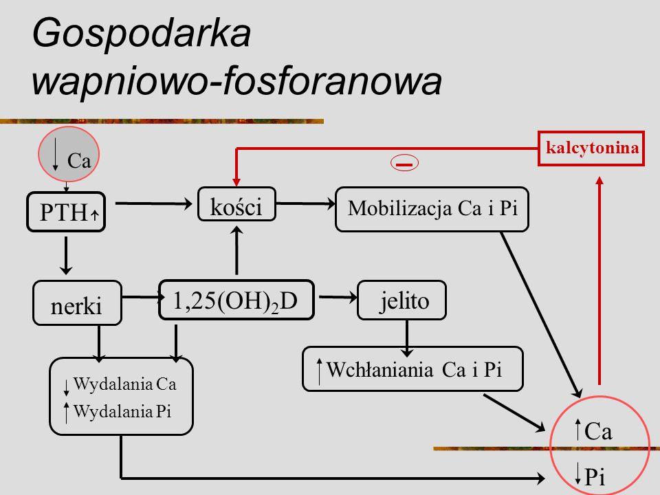 Gospodarka wapniowo-fosforanowa Ca PTH nerki kości 1,25(OH) 2 Djelito Wchłaniania Ca i Pi Mobilizacja Ca i Pi Wydalania Ca Wydalania Pi Ca Pi kalcyton