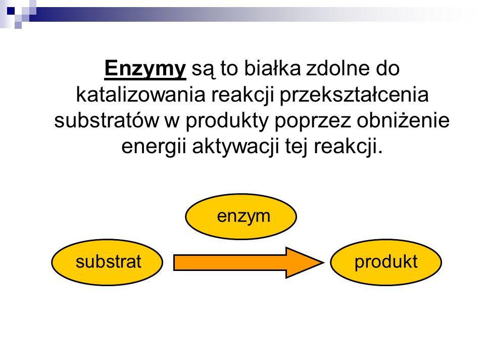 Oznaczanie aktywności enzymów Enzym katalizuje reakcję przekształcenia substratów w produkty, a szybkość tej reakcji jest zależna od ilości aktywnego enzymu w środowisku reakcji.