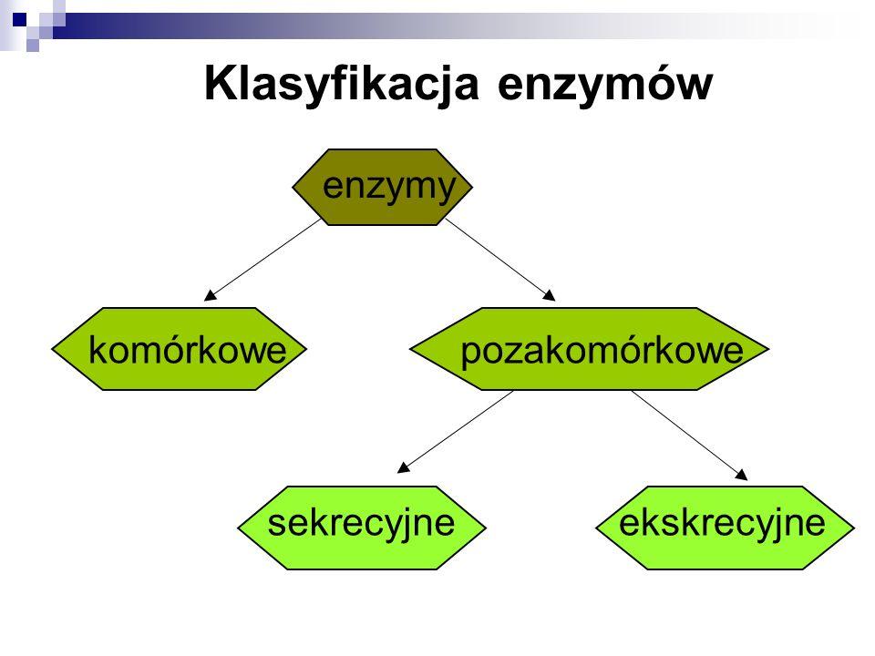 Jednostki aktywności enzymów Jednostka enzymatyczna (IU) jest to taka ilość enzymu, która w standardowych warunkach katalizuje przekształcenie 1 μmola substratu w ciągu 1 minuty, w warunkach optymalnych dla danego enzymu.