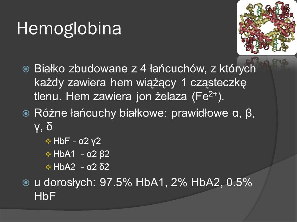 Hemoglobina Białko zbudowane z 4 łańcuchów, z których każdy zawiera hem wiążący 1 cząsteczkę tlenu. Hem zawiera jon żelaza (Fe 2+ ). Różne łańcuchy bi
