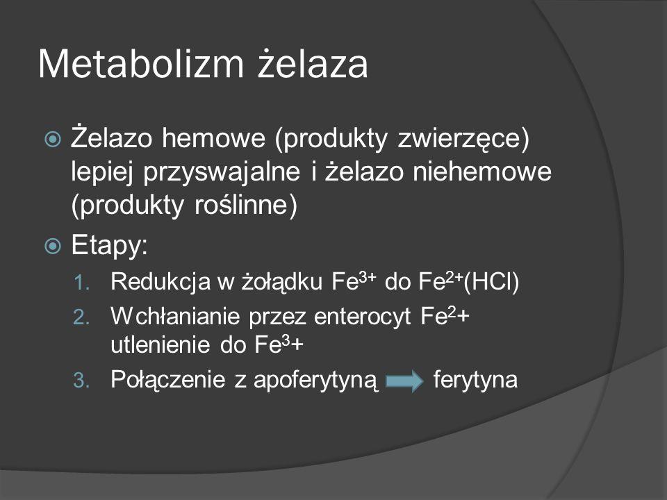 Metabolizm żelaza Żelazo hemowe (produkty zwierzęce) lepiej przyswajalne i żelazo niehemowe (produkty roślinne) Etapy: 1. Redukcja w żołądku Fe 3+ do