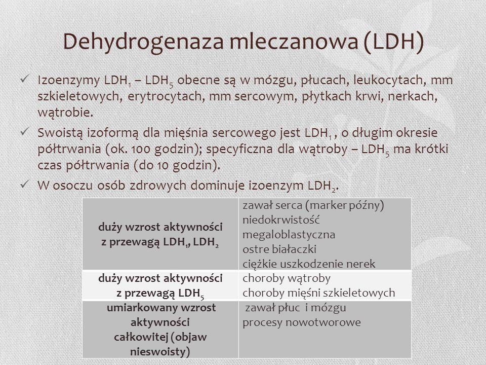 Dehydrogenaza mleczanowa (LDH) Izoenzymy LDH 1 – LDH 5 obecne są w mózgu, płucach, leukocytach, mm szkieletowych, erytrocytach, mm sercowym, płytkach