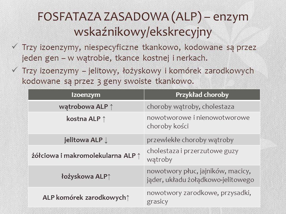 FOSFATAZA ZASADOWA (ALP) – enzym wskaźnikowy/ekskrecyjny Trzy izoenzymy, niespecyficzne tkankowo, kodowane są przez jeden gen – w wątrobie, tkance kos