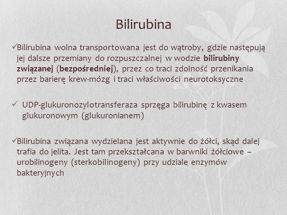 Bilirubina Bilirubina wolna transportowana jest do wątroby, gdzie następują jej dalsze przemiany do rozpuszczalnej w wodzie bilirubiny związanej (bezp