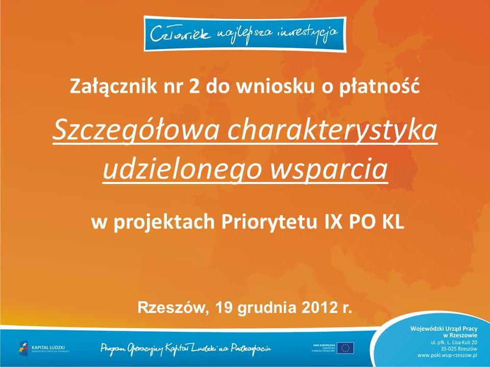 Załącznik nr 2 do wniosku o płatność Szczegółowa charakterystyka udzielonego wsparcia w projektach Priorytetu IX PO KL Rzeszów, 19 grudnia 2012 r.