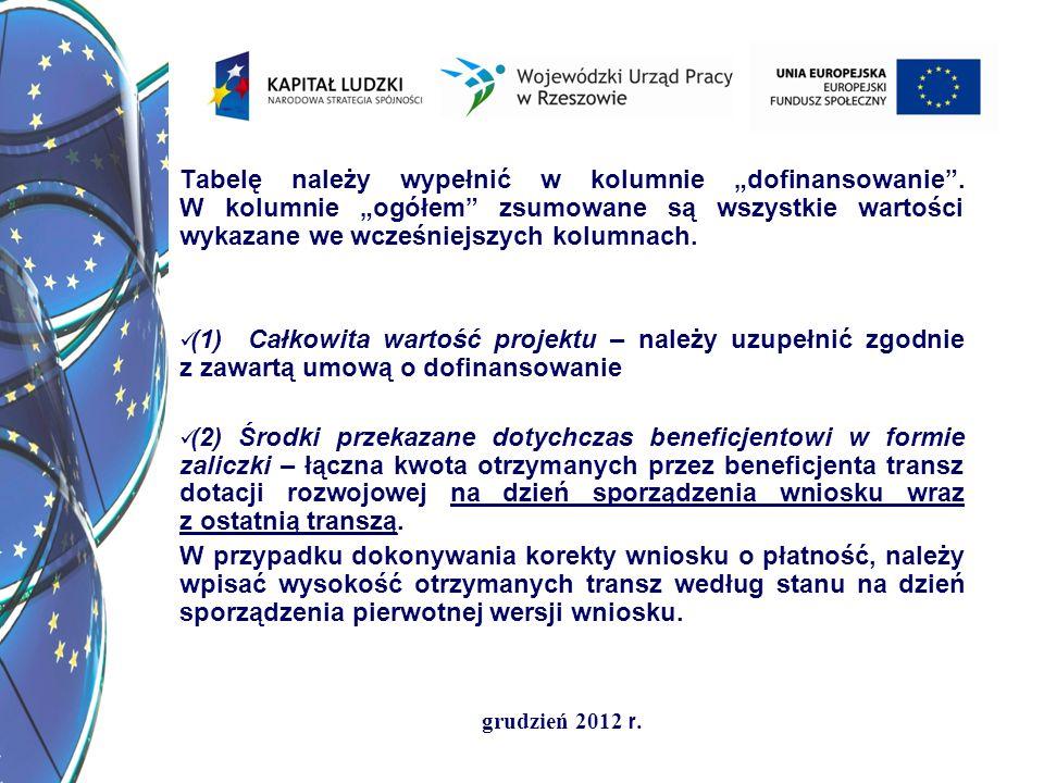 grudzień 2012 r. Tabelę należy wypełnić w kolumnie dofinansowanie. W kolumnie ogółem zsumowane są wszystkie wartości wykazane we wcześniejszych kolumn