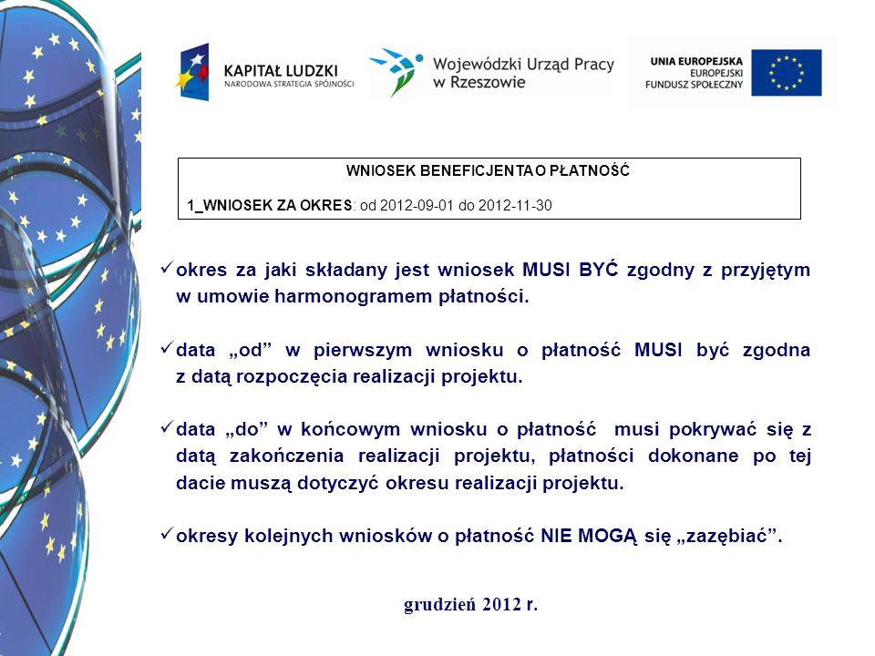 grudzień 2012 r.2_PROJEKT (1) Program Operacyjny Kapitał Ludzki (2) Priorytet: IX.