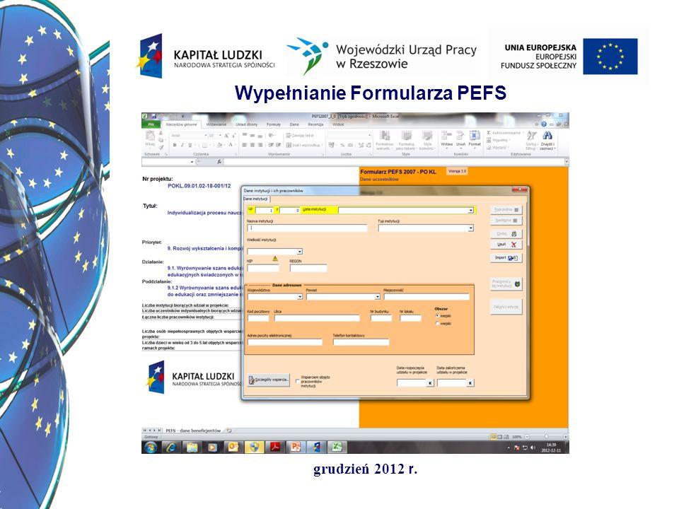 grudzień 2012 r. Wypełnianie Formularza PEFS