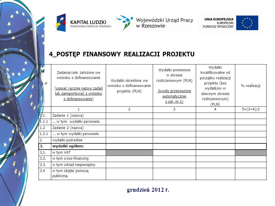 grudzień 2012 r. L.p Zadania/cele założone we wniosku o dofinansowanie (wpisać ręcznie nazwy zadań lub zaimportować z wniosku o dofinansowanie) Wydatk
