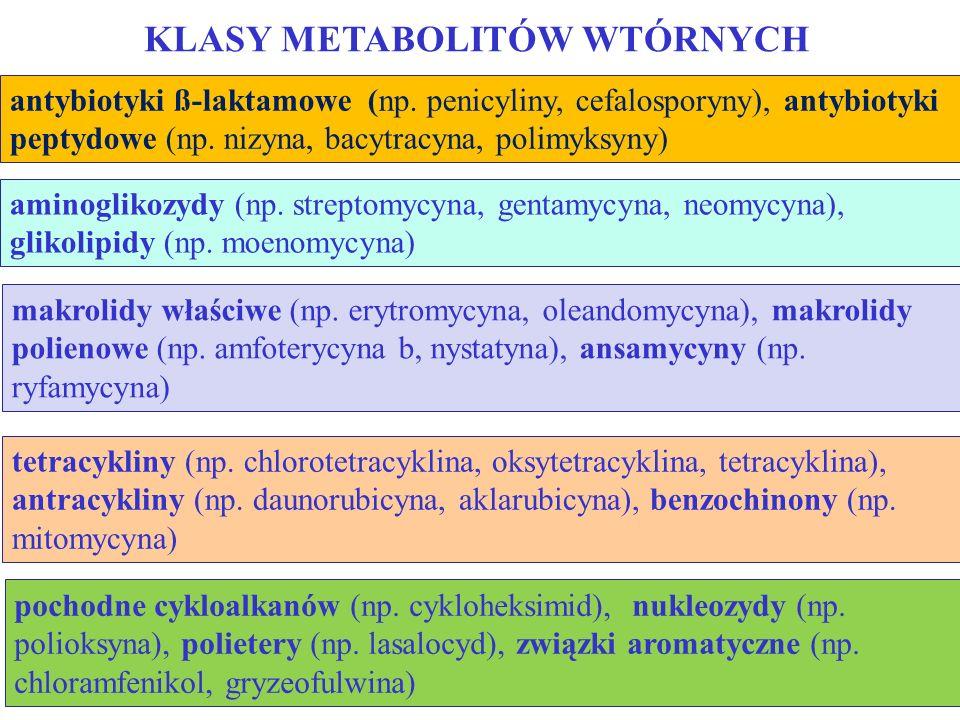 antybiotyki ß-laktamowe (np. penicyliny, cefalosporyny), antybiotyki peptydowe (np. nizyna, bacytracyna, polimyksyny) KLASY METABOLITÓW WTÓRNYCH amino