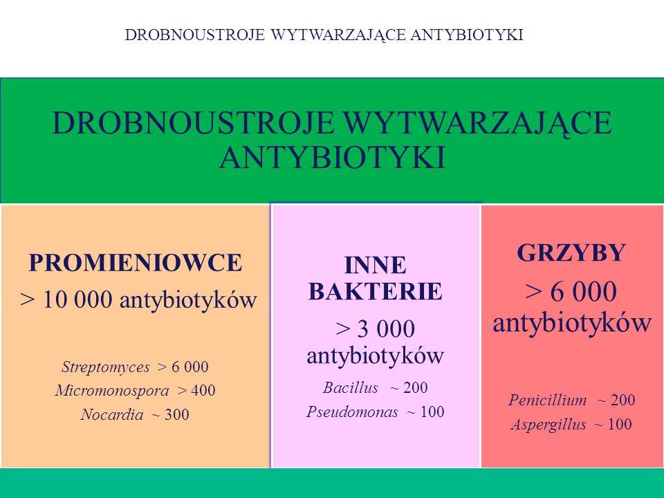 PROMIENIOWCE DROBNOUSTROJE WYTWARZAJĄCE ANTYBIOTYKI PROMIENIOWCE > 10 000 antybiotyków Streptomyces > 6 000 Micromonospora > 400 Nocardia ~ 300 INNE B