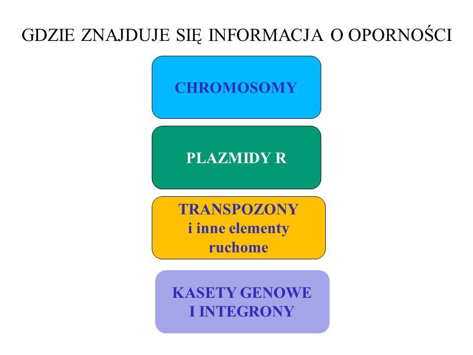 GDZIE ZNAJDUJE SIĘ INFORMACJA O OPORNOŚCI CHROMOSOMY PLAZMIDY R TRANSPOZONY i inne elementy ruchome KASETY GENOWE I INTEGRONY
