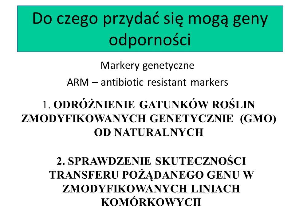 Do czego przydać się mogą geny odporności Markery genetyczne ARM – antibiotic resistant markers 1. ODRÓŻNIENIE GATUNKÓW ROŚLIN ZMODYFIKOWANYCH GENETYC