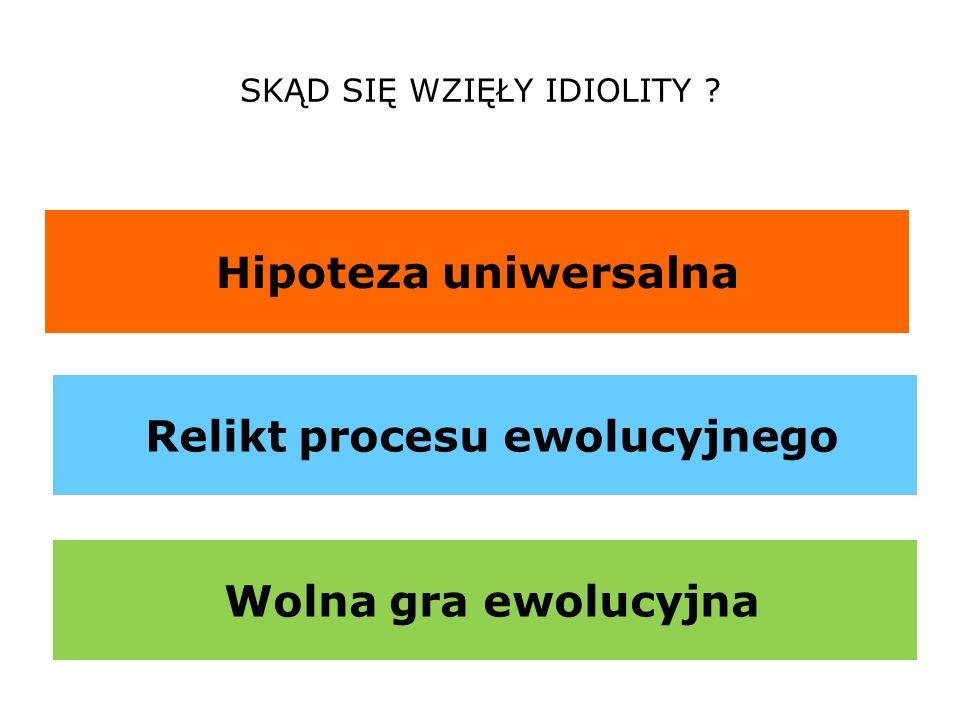 SKĄD SIĘ WZIĘŁY IDIOLITY ? Hipoteza uniwersalna Relikt procesu ewolucyjnego Wolna gra ewolucyjna