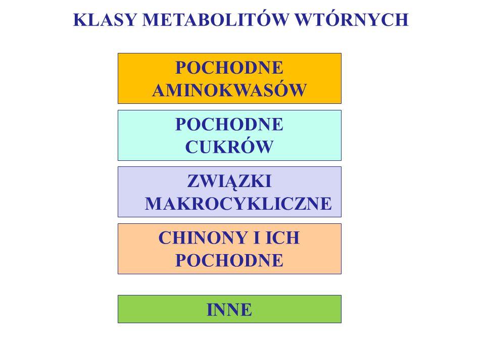 antybiotyki ß-laktamowe (np.penicyliny, cefalosporyny), antybiotyki peptydowe (np.