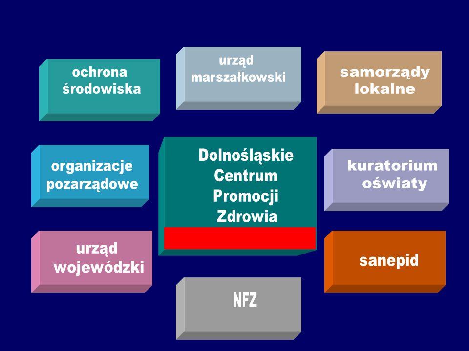 Dolnośląskie Centrum Promocji Zdrowia. (profesjonalny zespół wykonawczy) Na Dolnym Śląsku potrzebne są prace w dwóch kierunkach: Rada d.s Promocji Zdr