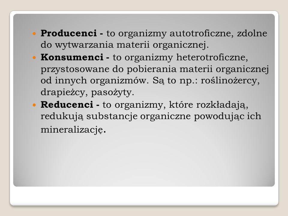 Producenci - to organizmy autotroficzne, zdolne do wytwarzania materii organicznej. Konsumenci - to organizmy heterotroficzne, przystosowane do pobier