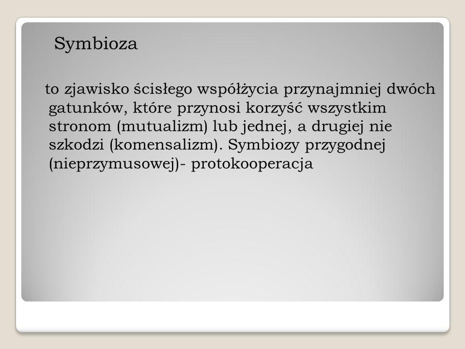 Symbioza to zjawisko ścisłego współżycia przynajmniej dwóch gatunków, które przynosi korzyść wszystkim stronom (mutualizm) lub jednej, a drugiej nie s