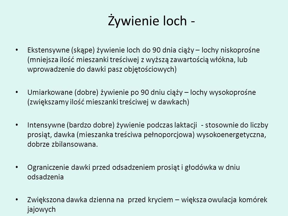 Żywienie loch - Ekstensywne (skąpe) żywienie loch do 90 dnia ciąży – lochy niskoprośne (mniejsza ilość mieszanki treściwej z wyższą zawartością włókna
