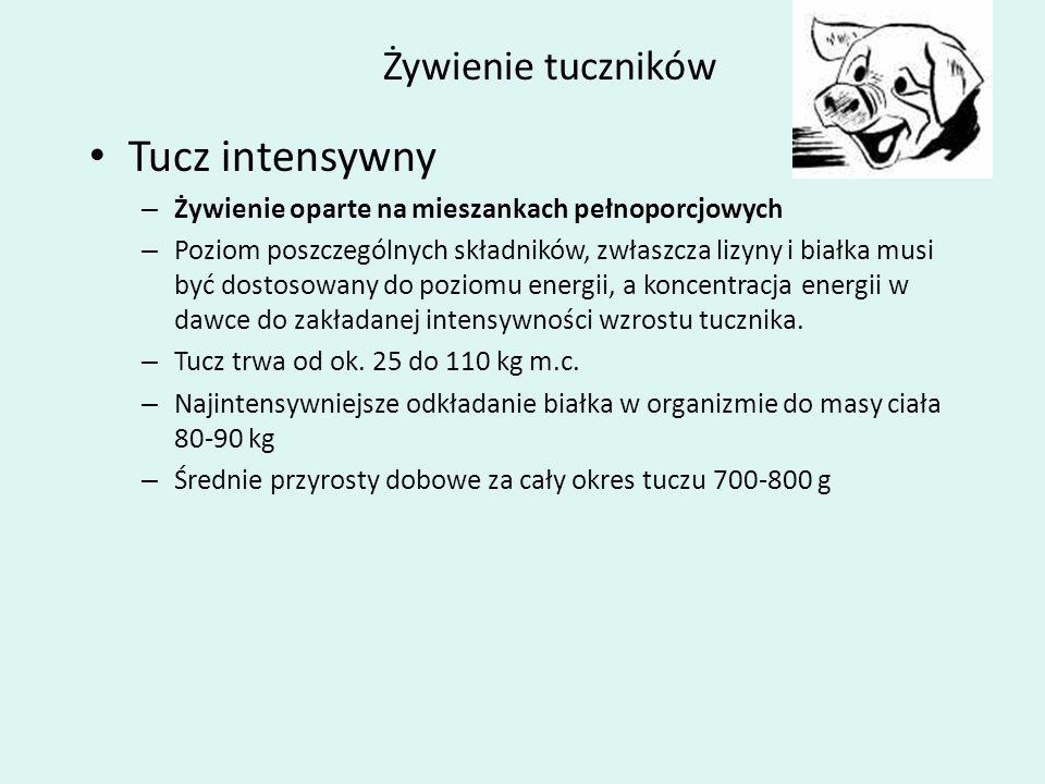 Żywienie tuczników Tucz intensywny – Żywienie oparte na mieszankach pełnoporcjowych – Poziom poszczególnych składników, zwłaszcza lizyny i białka musi