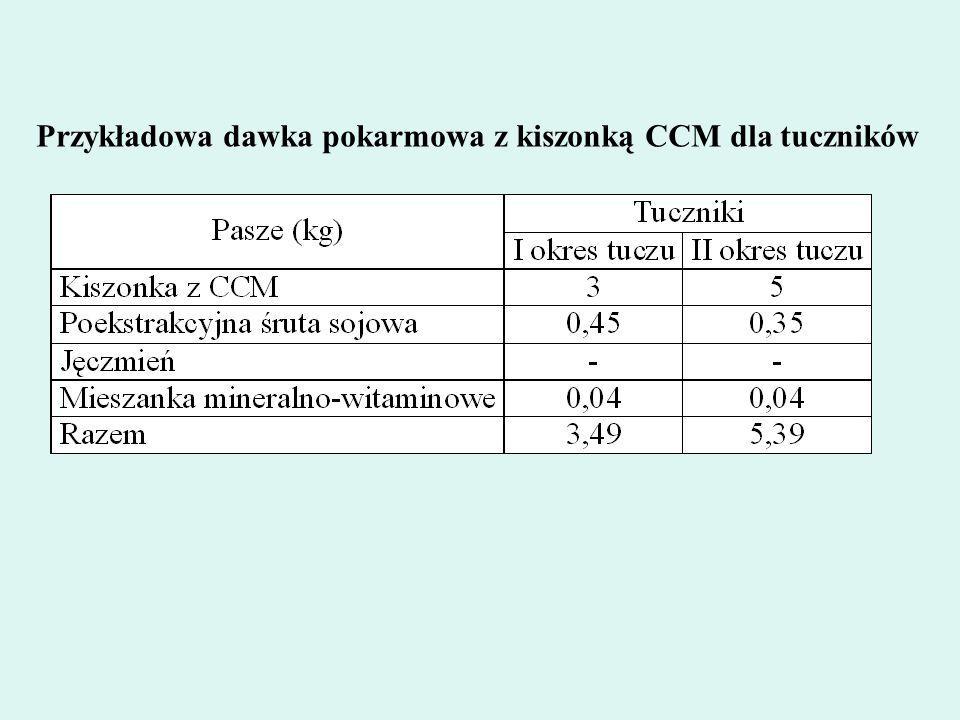 Przykładowa dawka pokarmowa z kiszonką CCM dla tuczników