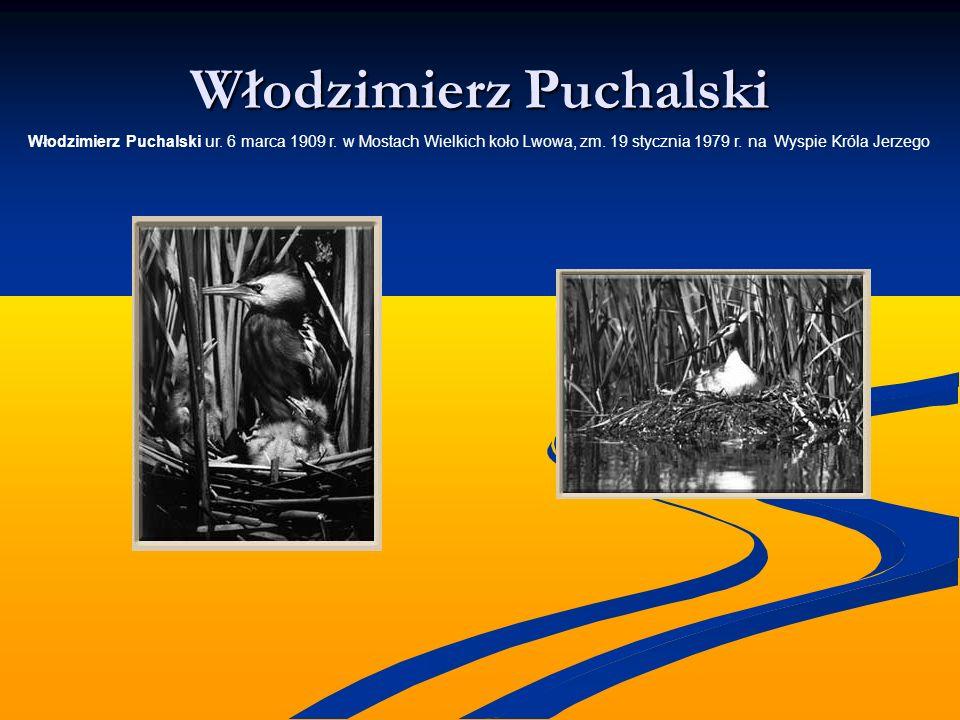 Włodzimierz Puchalski Włodzimierz Puchalski ur. 6 marca 1909 r. w Mostach Wielkich koło Lwowa, zm. 19 stycznia 1979 r. na Wyspie Króla Jerzego