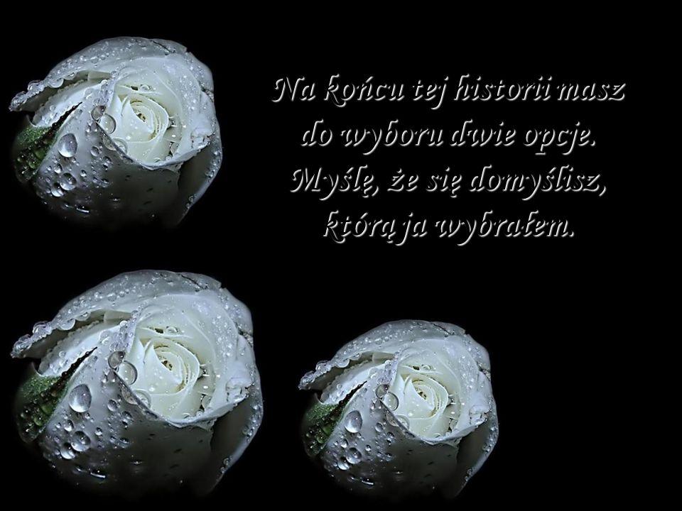 Zapach (tłumaczenie Katarzyna Pawłowska) deszczu