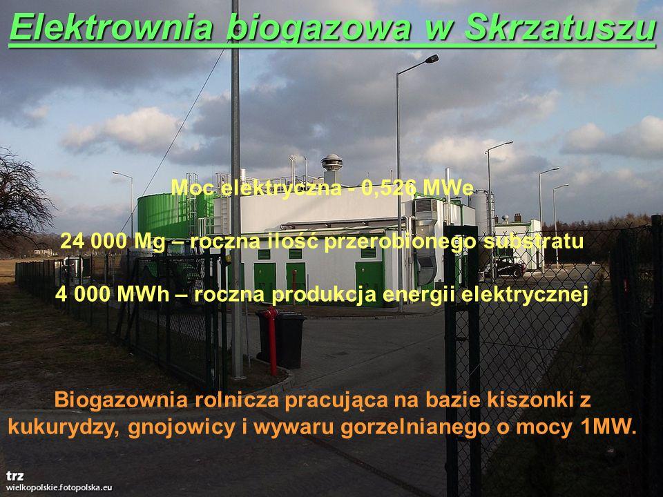 Elektrownia biogazowa w Skrzatuszu Moc elektryczna - 0,526 MWe 24 000 Mg – roczna ilość przerobionego substratu 4 000 MWh – roczna produkcja energii e
