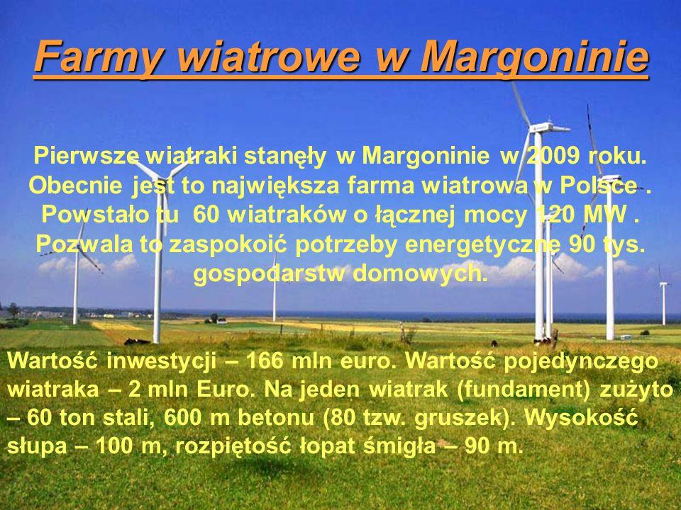 Farmy wiatrowe w Margoninie Pierwsze wiatraki stanęły w Margoninie w 2009 roku. Obecnie jest to największa farma wiatrowa w Polsce. Powstało tu 60 wia