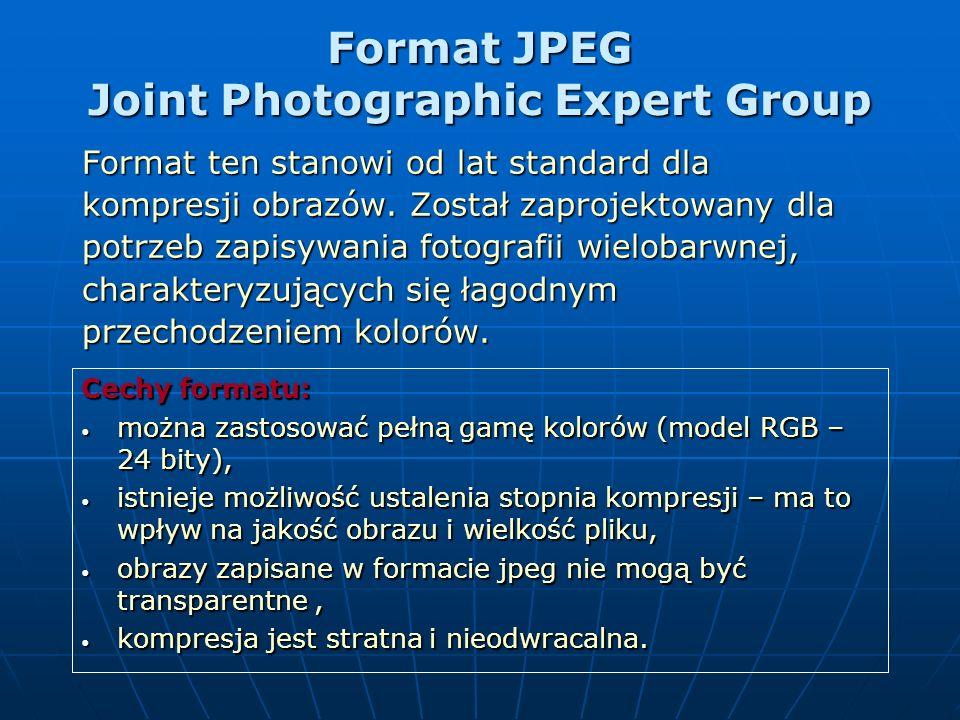 Formaty plików rastrowych Formaty wykorzystujące bezstratną kompresję: Formaty wykorzystujące bezstratną kompresję: TIFF, BMP, PCX, PSD (wykorzystywan