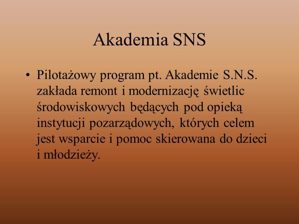 Akademia SNS Pilotażowy program pt. Akademie S.N.S. zakłada remont i modernizację świetlic środowiskowych będących pod opieką instytucji pozarządowych