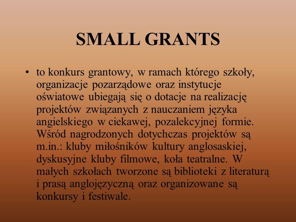 SMALL GRANTS to konkurs grantowy, w ramach którego szkoły, organizacje pozarządowe oraz instytucje oświatowe ubiegają się o dotacje na realizację proj