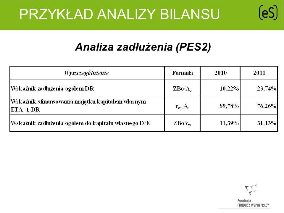 PRZYKŁAD ANALIZY BILANSU Analiza aktywności gospodarczej (PES2)