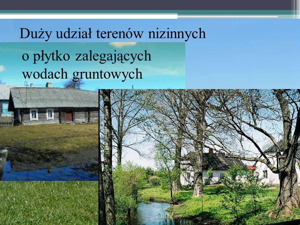 Duży udział terenów nizinnych o płytko zalegających wodach gruntowych