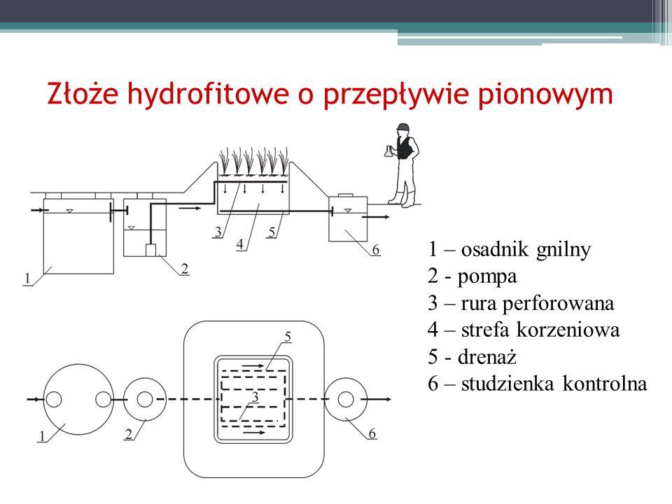 1 – osadnik gnilny 2 - pompa 3 – rura perforowana 4 – strefa korzeniowa 5 - drenaż 6 – studzienka kontrolna Złoże hydrofitowe o przepływie pionowym