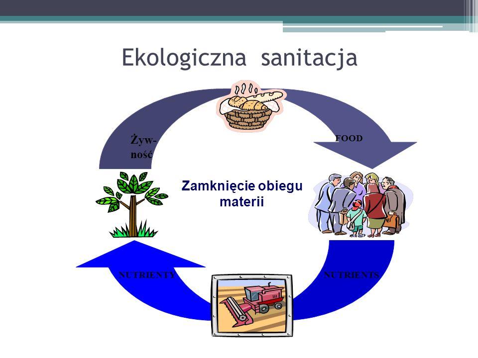 Dostępność sieci kanalizacyjnych w Polsce 2008 (GUS 2009)